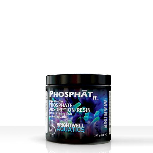 Phosphat R _ فسفات آر