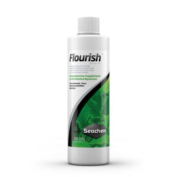 فلوریش Flourish