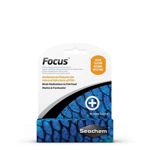 فوکوس Focus