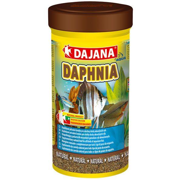 دافنی Daphnia