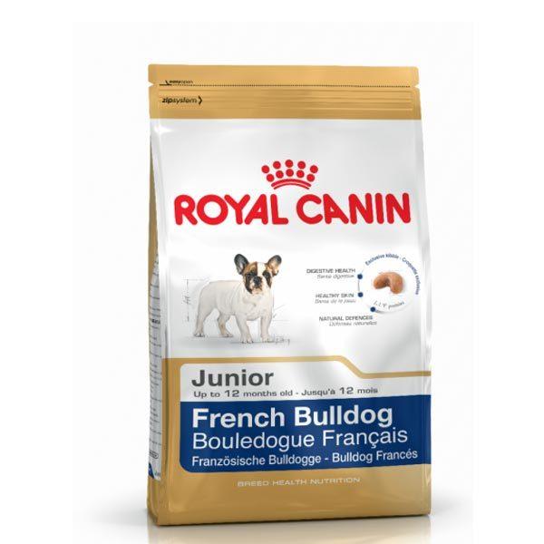 غذای فرنچ بولداگ غذای خشک سگ