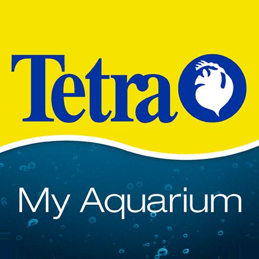تترا Tetra