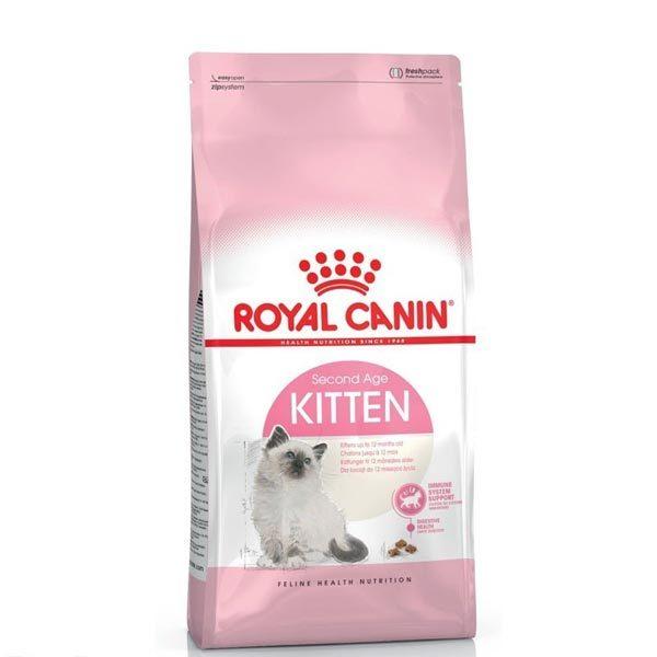 غذای گربه کیتن