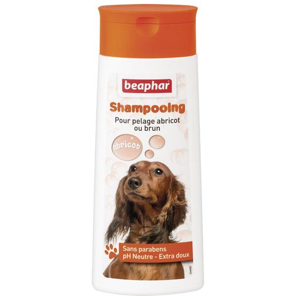 شامپو سگ قهوه ای بیفار