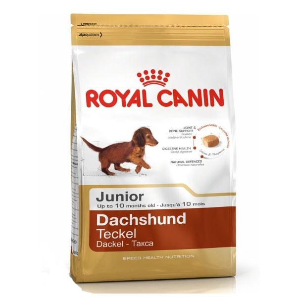 غذای خشک سگ پاپی نژاد داشهوند رویال کنین - Royal Canin Dachshund Puppy